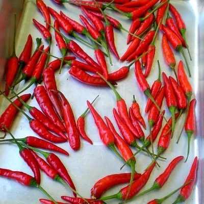 Pantry 101 – Bird's Eye Chilli Powder (Cili Padi Powder)