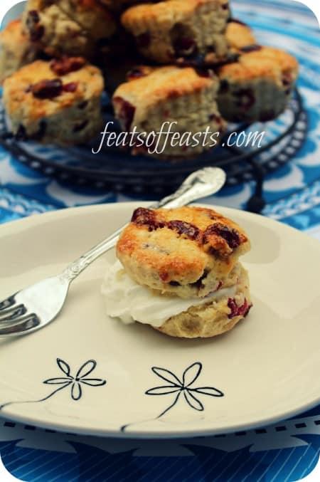 cranberry scone 1 w
