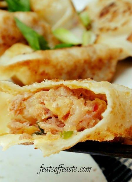 kimchi pot sticker