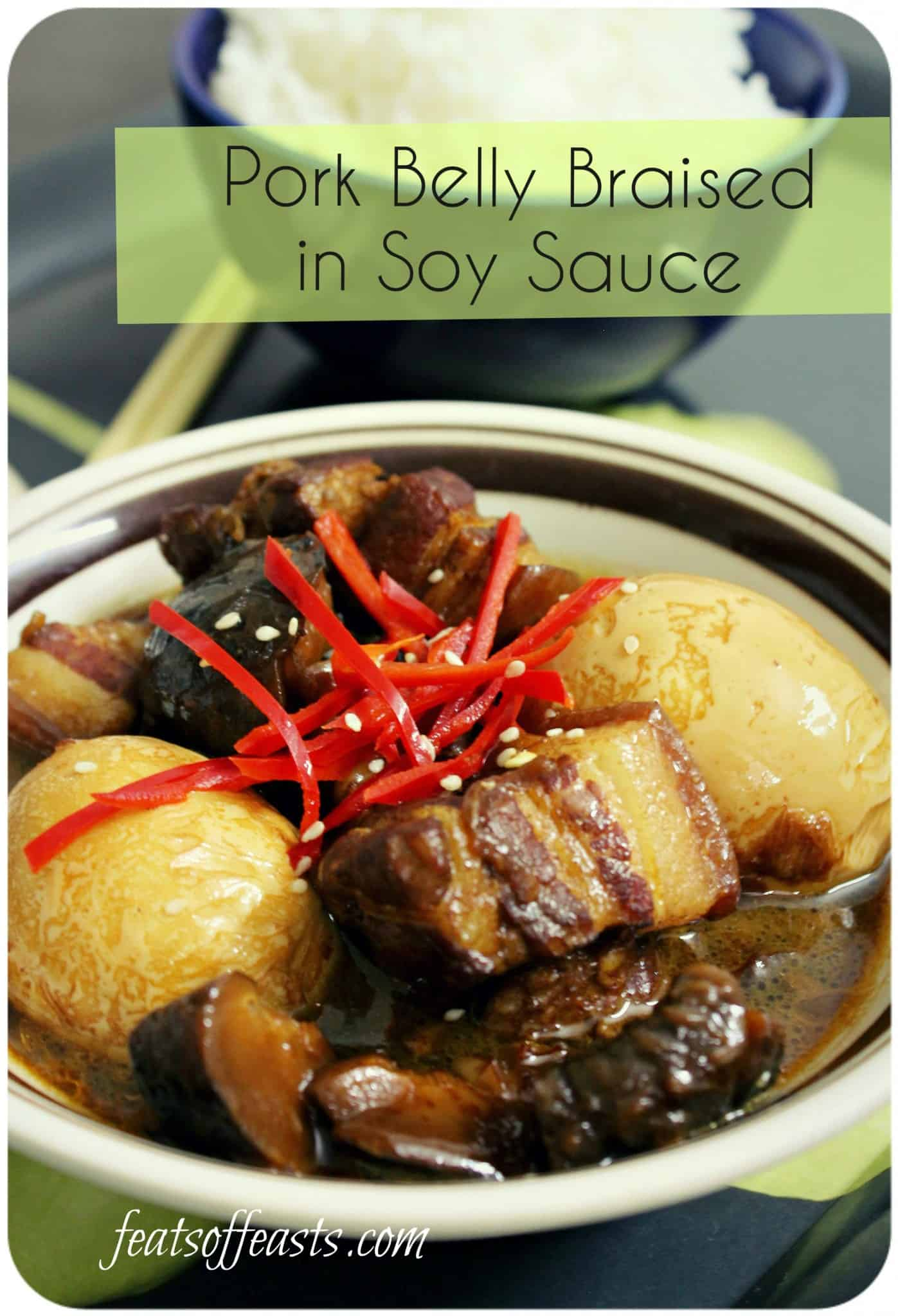 Pork Belly Braised in Soy Sauce (Tau Eu Bak)