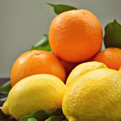 Photography – Citrus (Orange and Lemons)